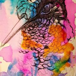 oiseaux tete